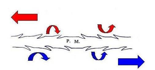 fils crantés